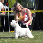 National Dog Show Mlada Boleslav