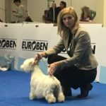 International dog show Nitra, Slovensko