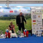 National dog show Floracanis Olomouc